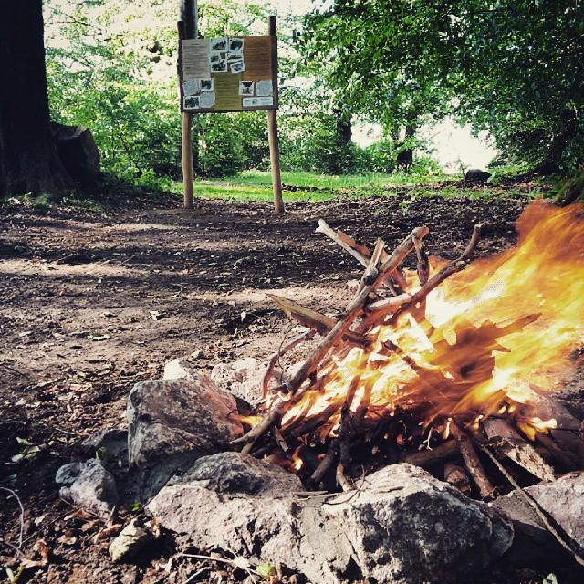Inauguration du feu de camp du bivouac de Taille ! Merci #ESCAPARDENNE !